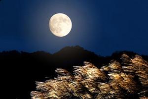 Moon_autumn01